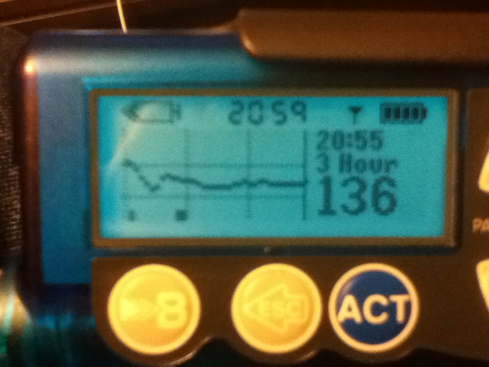 CGM trace for pizza