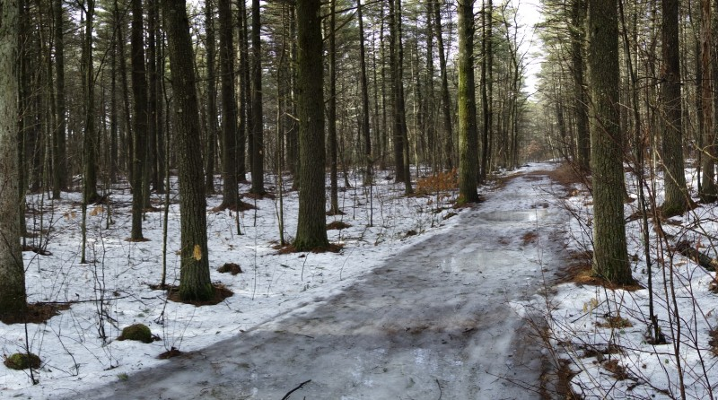 Icy trail in Upton SF