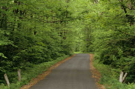 Beartown Mountain Road - Great Barrington, Mass. (2007)