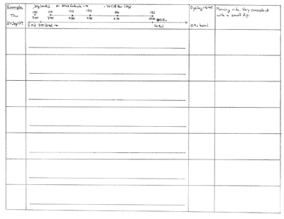 A worksheet with spaces for blood glucose readings, temporary basals, insulin, exercise, notes, etc. (blank - 7 days)